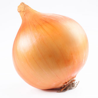 Onion IB http://www.kmle.co.kr/search.php?Search=mineral+absorption