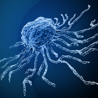 Cure stem multiple adult sclerosis cell